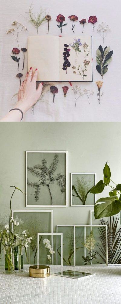 Decora tu pared con flores secas